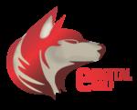 edigitalwolf logo